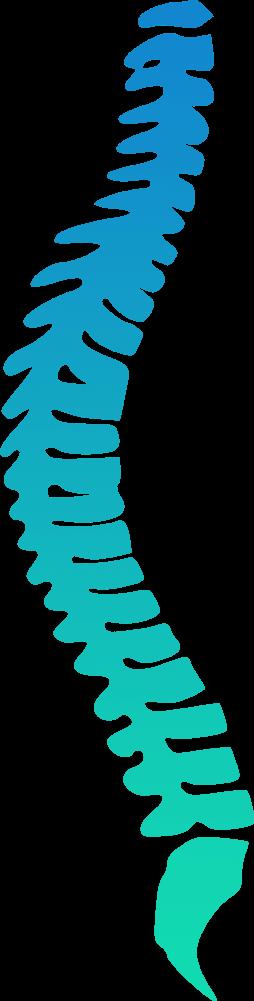 Атлант-плюс центр корррекции позвоночника и сустава позволяют успешно использовать растение для лечения подагры ревматизма суставных